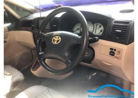 Volkswagen (New Beetle)